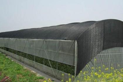 山西温室遮阳网